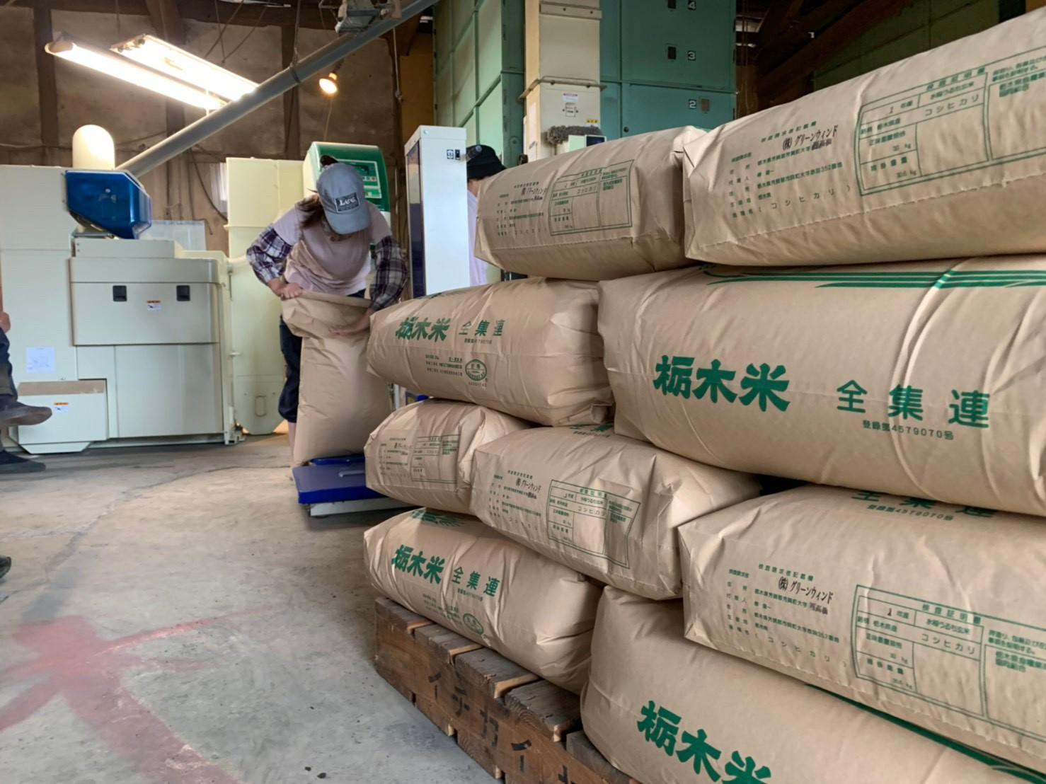 グリーンウインドのお米たち